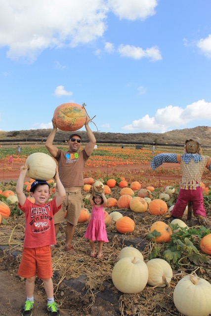 Visit California Farms, Erin Mahoney Harris, California farm harvest, best California farms to visit with kids