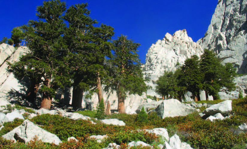 how to train for Mount Whitney, Mount Whitney, One Best Hike: Mount Whitney