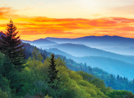Top Trails: Great Smoky Mountains National Park, Johnny Molloy, horseback riding in the Smokies