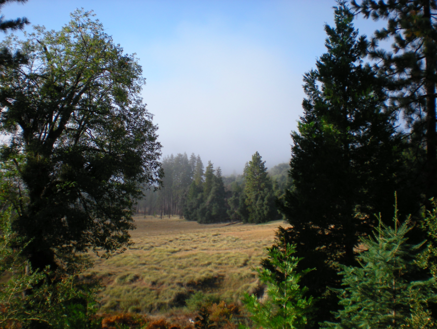 Palomar Mountain, Afoot & Afield: San Diego County, Scott Turner, Barker Valley, California hiking