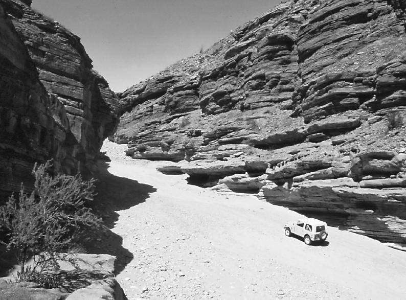 Anza-Borrego Desert Region, driving in the desert