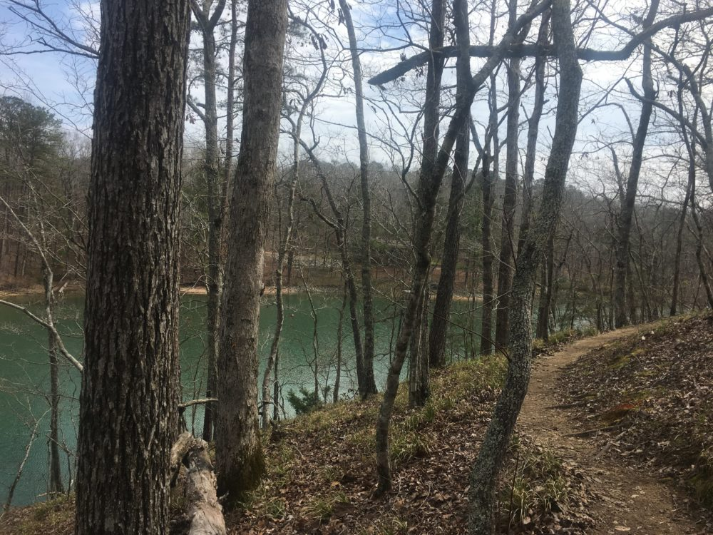 How to Run 100 Miles, ultra running, trail running, Lake Martin 100