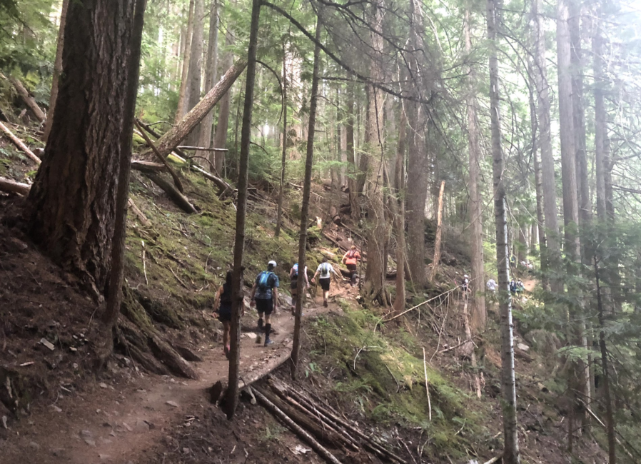 60 Hikes Within 60 Miles: Seattle, Federation Forest State Park, trail running Seattle