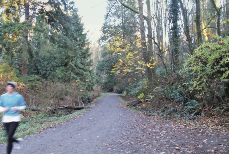 Walking Seattle, Clark Humphrey, Wilderness Press, urban hiking, urban walks in Seattle