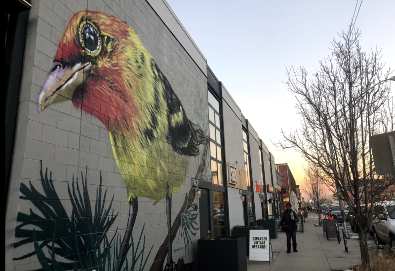 Walking Denver - RiNo Neighborhood